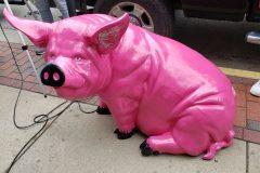 Hey piggy!